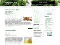 стили и элементы веб дизайна